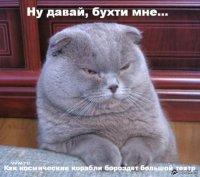 Алексей Калинин, 13 апреля 1983, Санкт-Петербург, id10115717